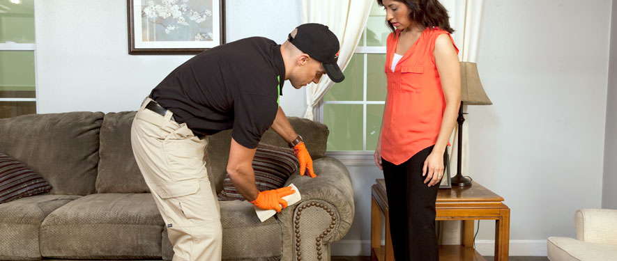 Kailua, HI carpet upholstery cleaning